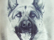 dog-sketch3
